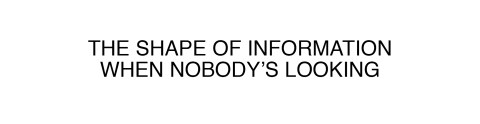 THE SHAPE OF INFORMATION WHEN NOBODY'S LOOKING 2011
