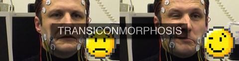 TRANSICONMORPHOSIS 2013