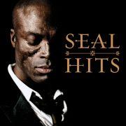 seal_pic_big