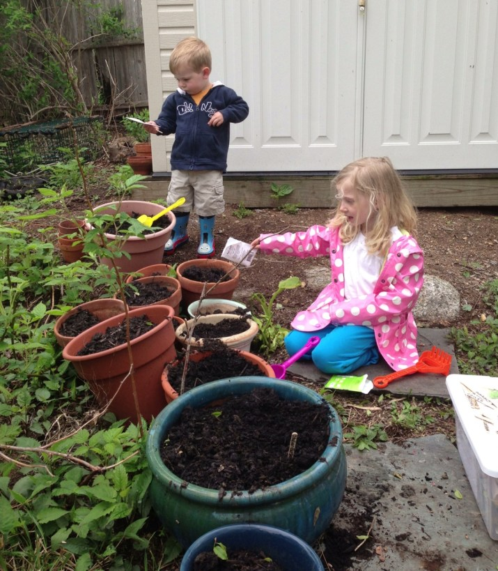 Gardening Planning: What to Plant and When