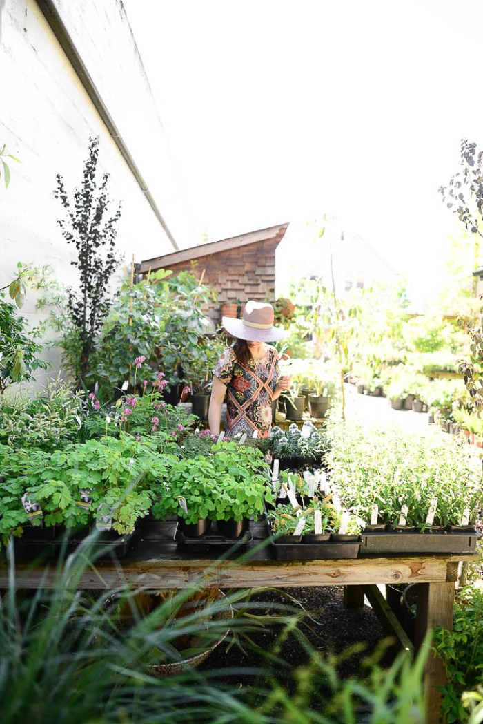 Things to do in Portland - Visit Pistils Nursery Portland