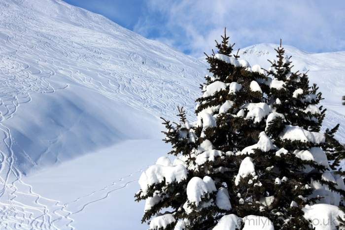 Advice for First Time Skiers