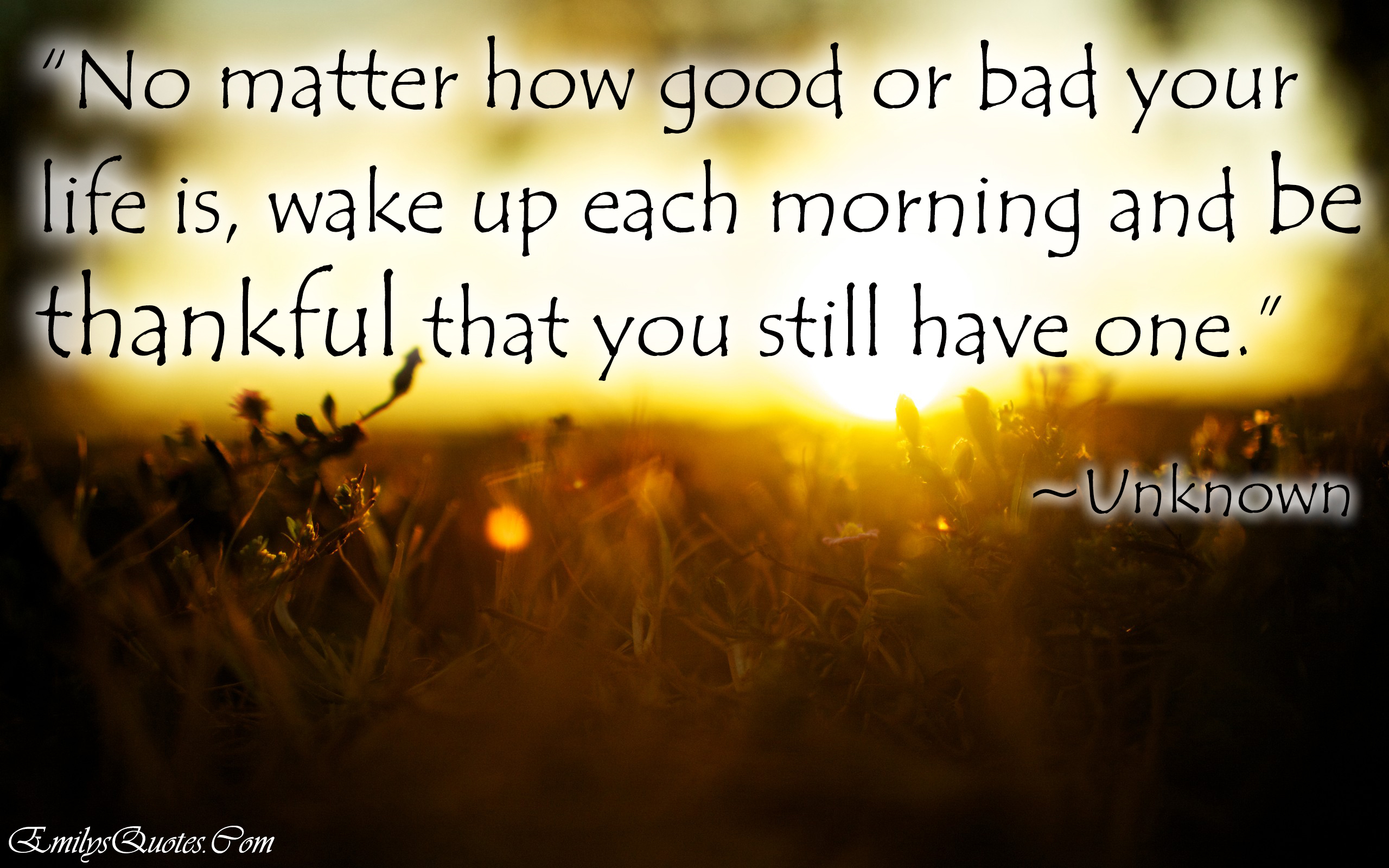 Flirty Quotes Wallpaper Amazing Good Morning Quotes Quotesgram
