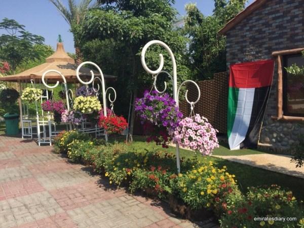 94-butterfly-garden-dubai-pictures-2015-emiratesdiary-094