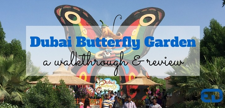 Dubai Butterfly Garden: A Walkthrough and Review! (Pictures and Video)