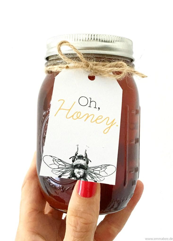 {Leben} Imkern mit der Bienenbox – Teil 2: Die ersten Wochen mit den Bienen