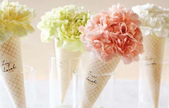 Carnation cones e1297411186396