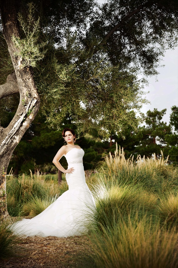 Imagine Studios - bridal portrait, las vegas wedding