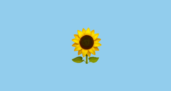 Fall Sunflower Desktop Wallpaper Sunflower Emoji