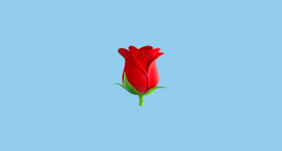 Rose Petals Falling Wallpaper Transparent Gif Rose Emoji