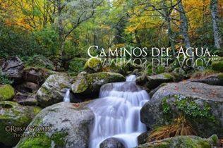 Caminos del Agua Rosa Gómez Photo & Art