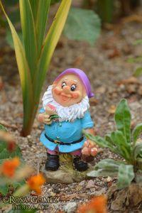 'El jardín de Favio' © Rosa Gómez