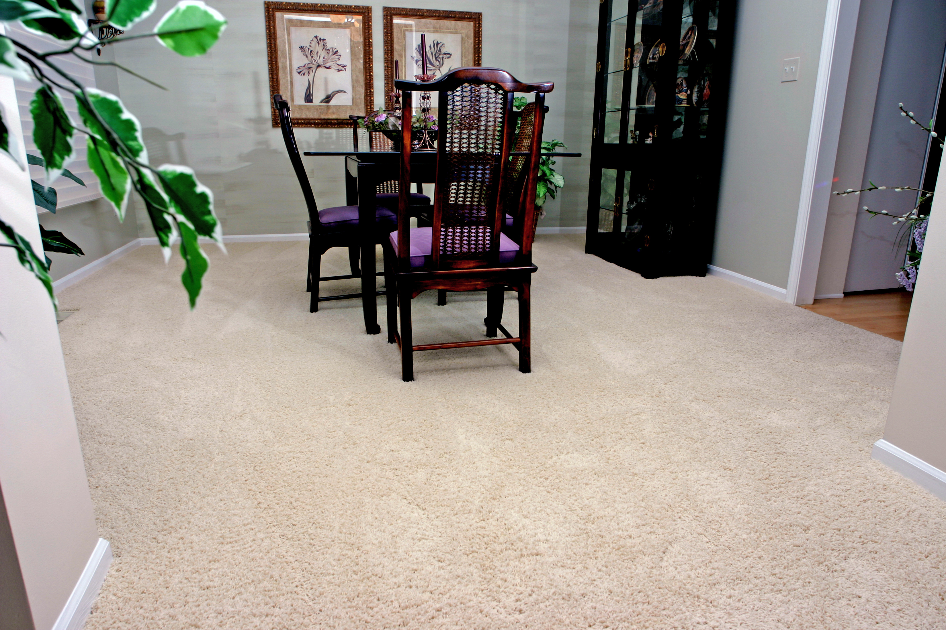 Best Carpets That Hide Stains And Footprints Empire