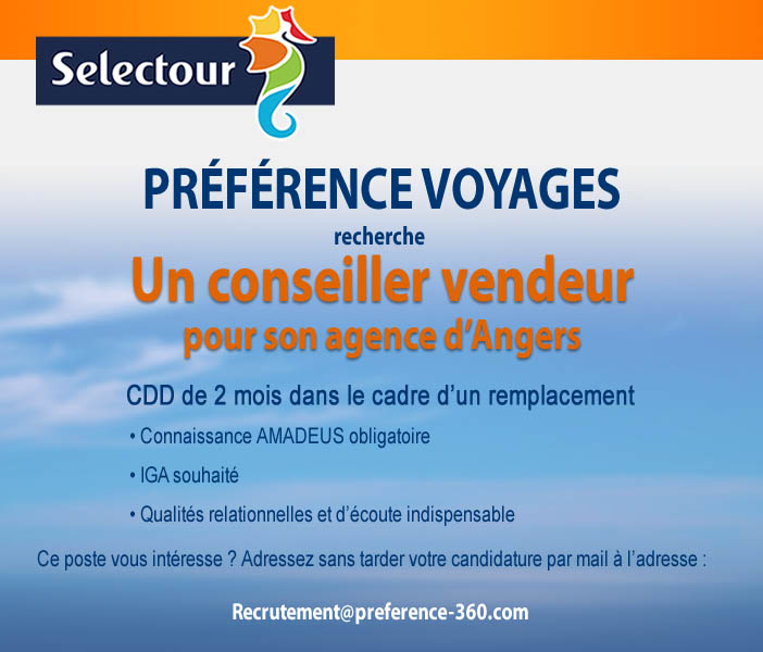 job agence de voyages cv