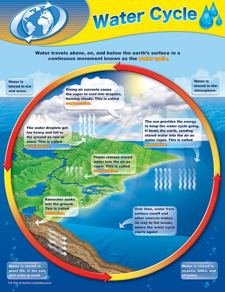 What Are Steps Water Cycle Process