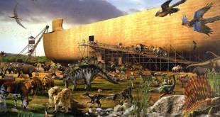 Arca de Noé para emprendedores