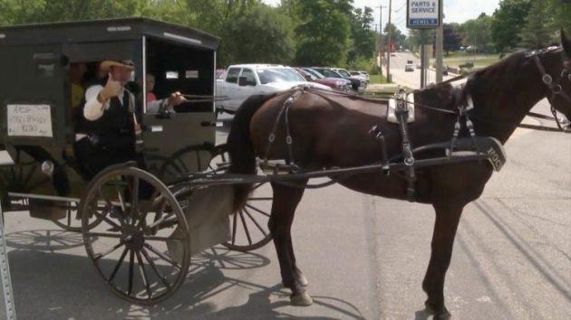 """CURIOSO: Los Amish ya tienen su """"Uber"""" a caballo"""