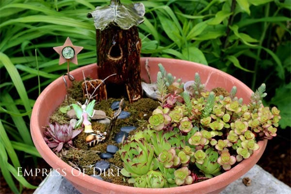 ... DIY Succulent Garden Art Ideas   Empress Of Dirt   Succulents Garden  Design ...