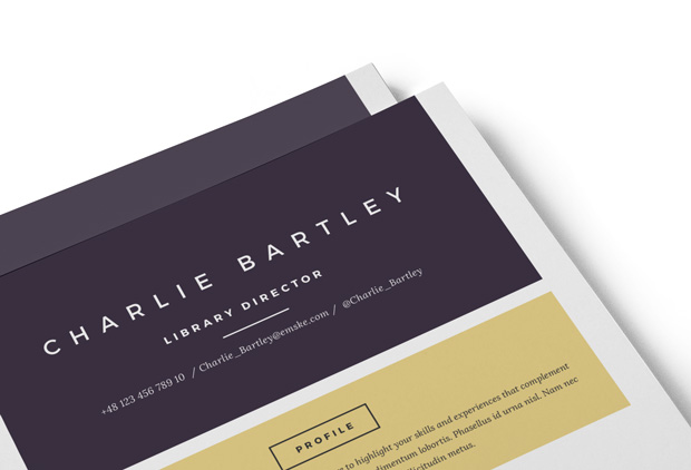 Chic Resume Template (PSD, Ms Word)
