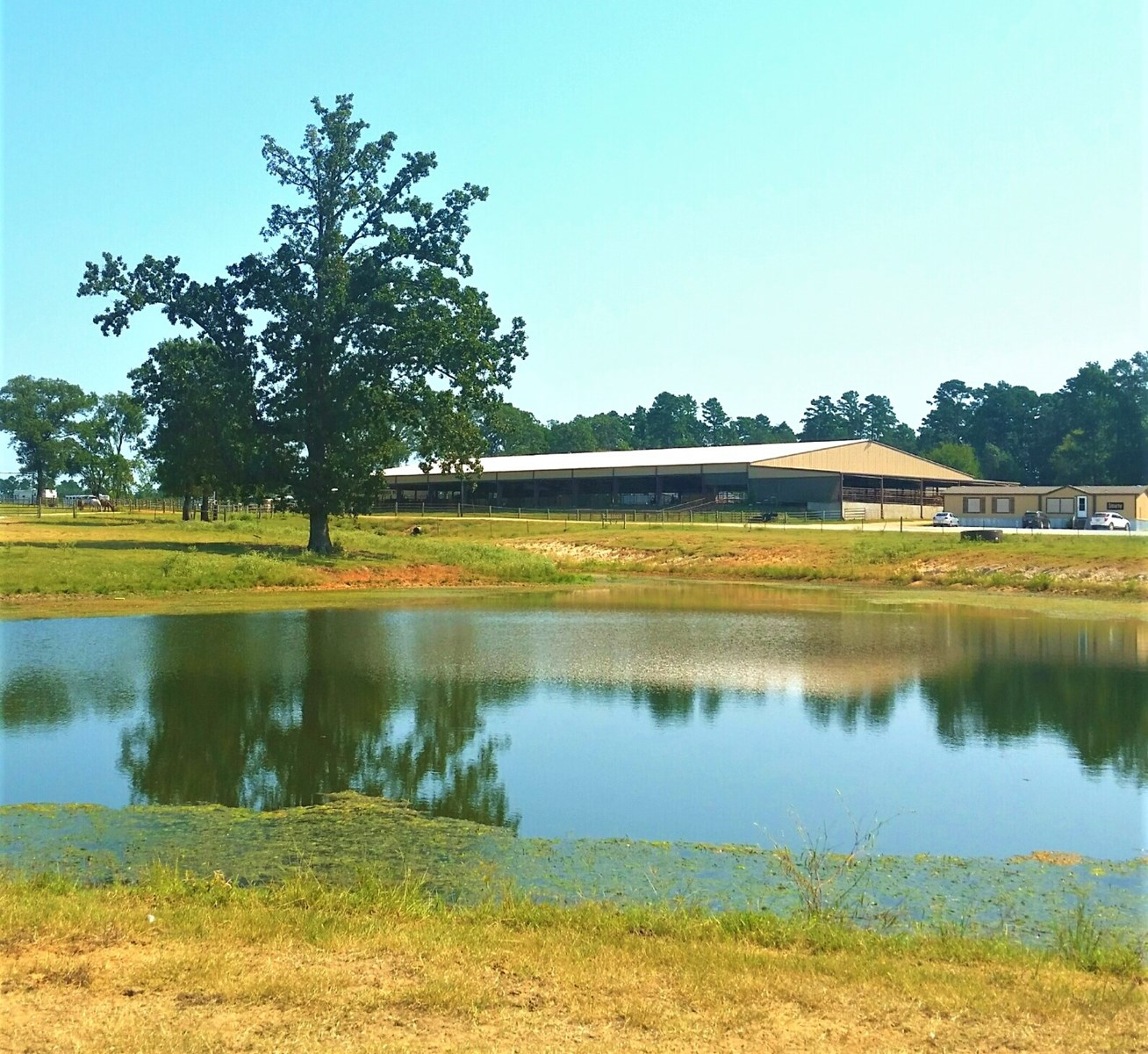Garage Experts Chapel Hill Cutting Horse And Roping Horse Facility For Sale In Ne Tx