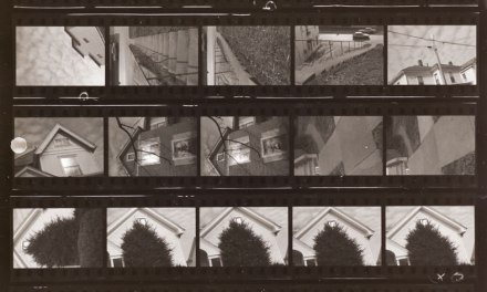 A paean to Ilford Pan F+ or: There's something about slow film