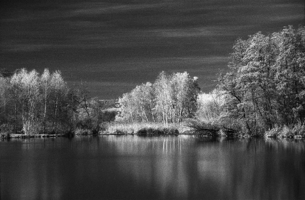 Fomapan 400 at E I6 shot through R72 filter