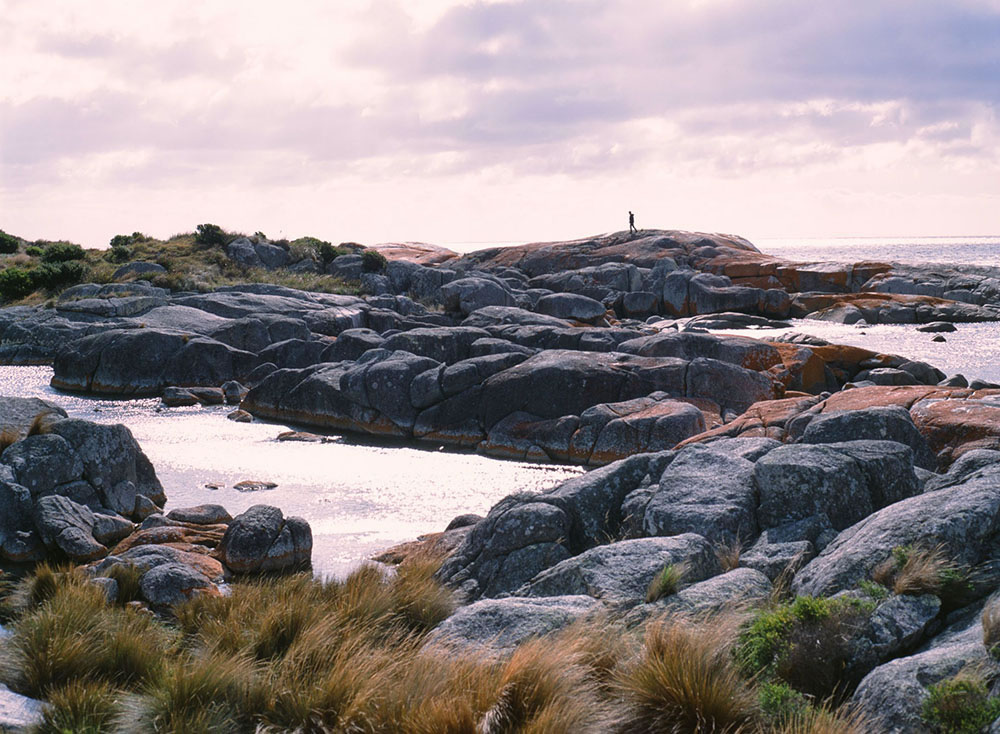 Tasmania Travelogue - Even more Bay of Fires