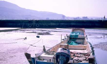 Low tide – Shot on Fuji Velvia 50 – RVP (120)