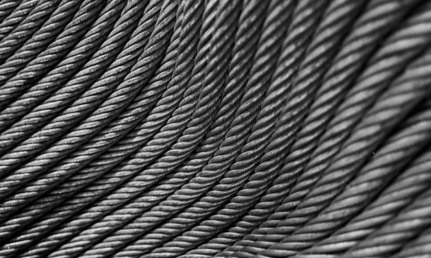 Coiled #02 – Shot on ADOX Silvermax 100 (35mm)