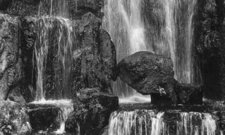 Slowed – Shot on Luckyfilm New SDH 100 (35mm)