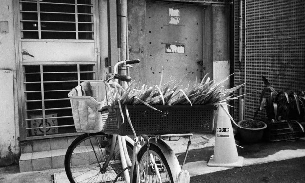 Special delivery –  – Shot on ILFORD HP5 PLUS (35mm)