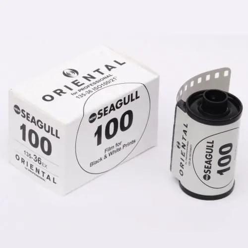 Oriental Seagull 100