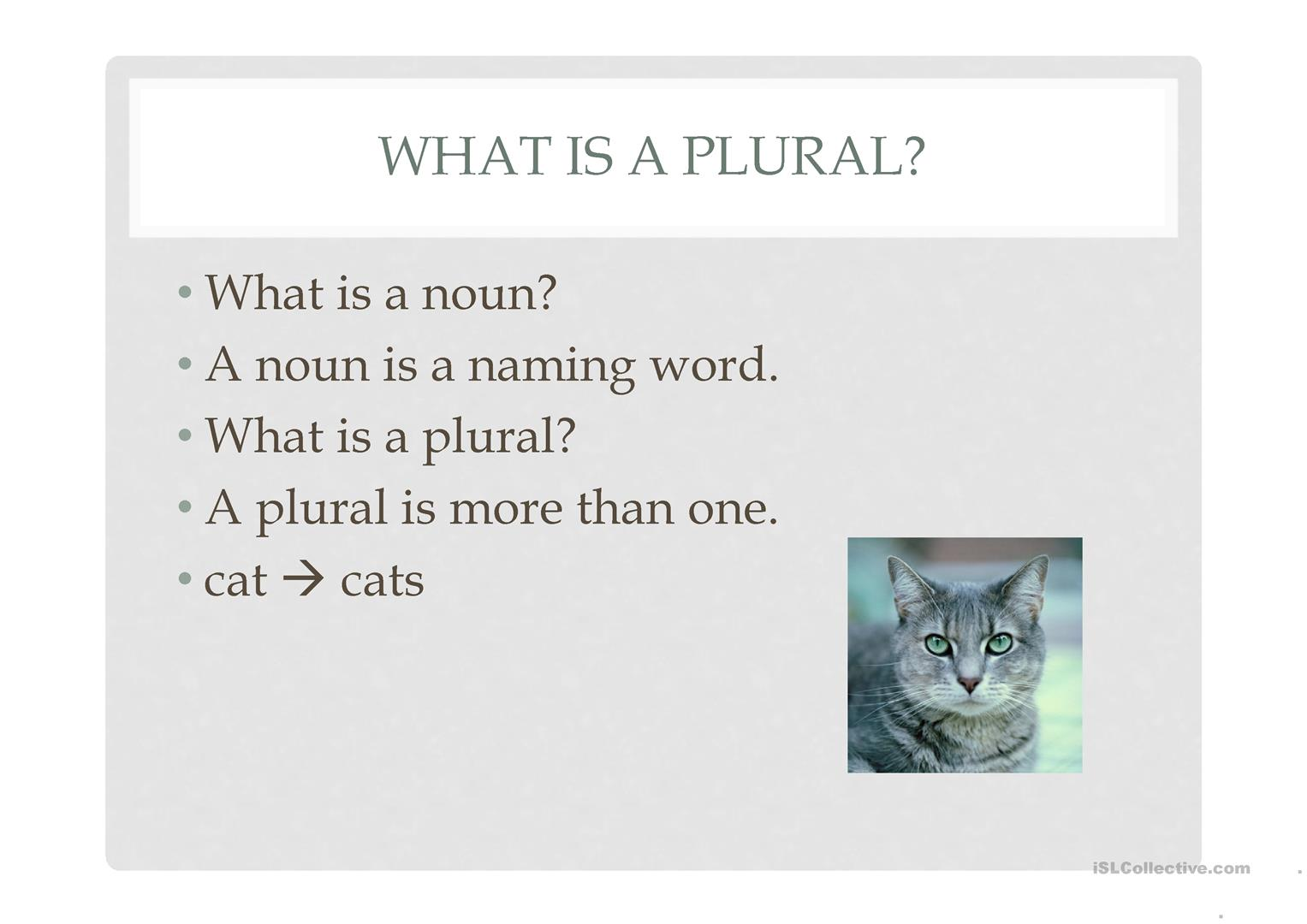 Irregular Plural Nouns Worksheet - Ivoiregion