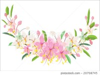 pink flower border or frame vintage design - Stock ...
