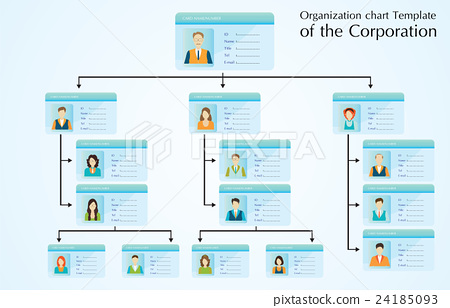 Organizational chart template of the corporation - Stock