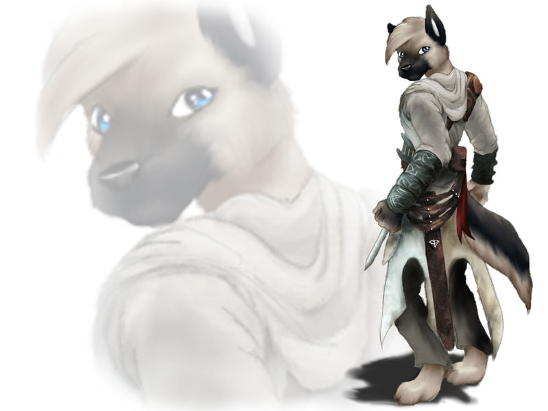 Anime Girl Wallpapers Morin Wolf Wikifur The Furry Encyclopedia