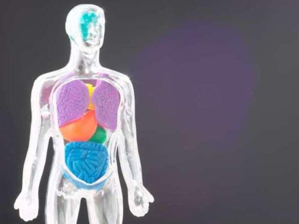 10 συμπτώματα που δείχνουν ότι έχετε άμεση ανάγκη από αποτοξίνωση