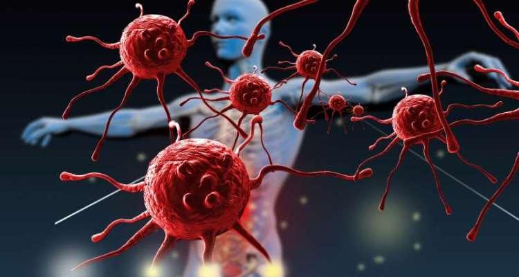 ανοσοποιητικο συστημα σωμα κυτταρα