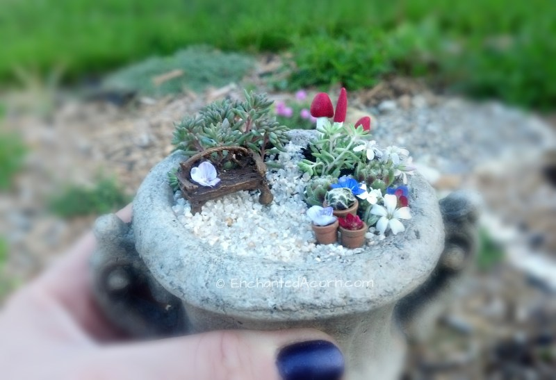 Large Of Micro Mini Fairy Garden