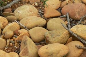 pierredon soil