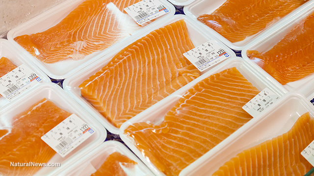 Packaged Salmon