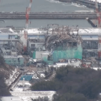 "Former Australian government minister says Australia should accept Fukushima debris - Japan ""just too crowded"""