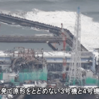 Post-Fukushima survey shows less than one-third of Americans supportive of nuclear power