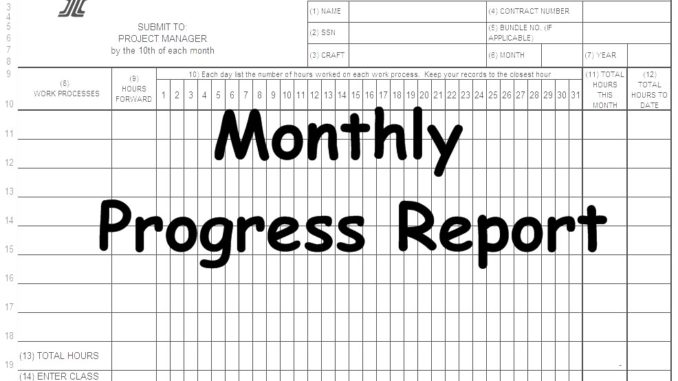 Monthly Progress Report(MPR) Spreadsheet - Engineering Feed