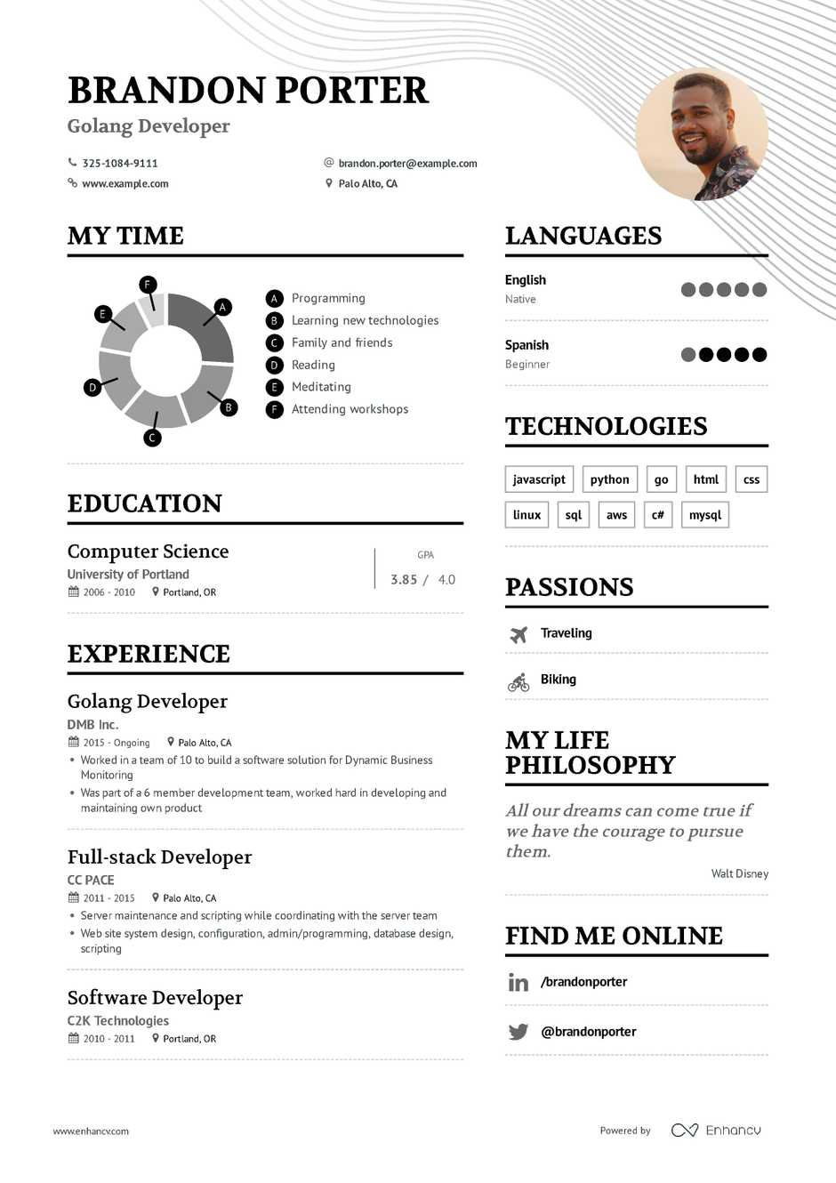 softeare developer sample resume