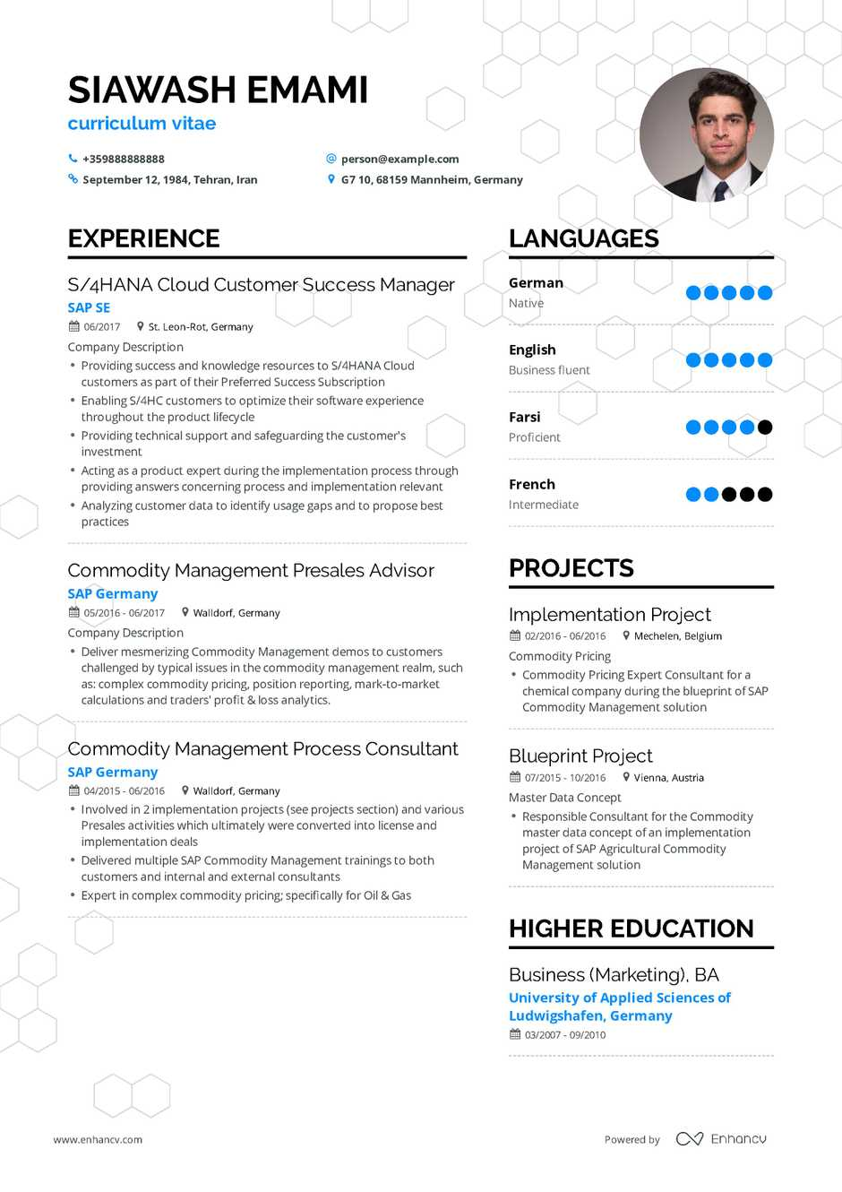 cv in english template expert