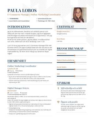 Cashier Resume Example and guide for 2019