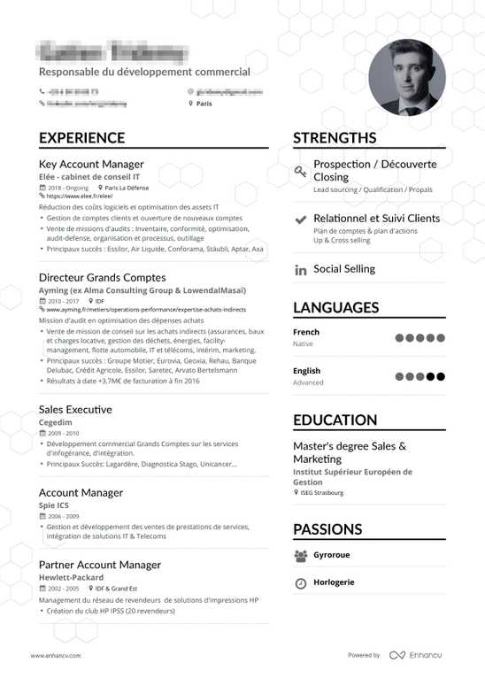 cv audit financier