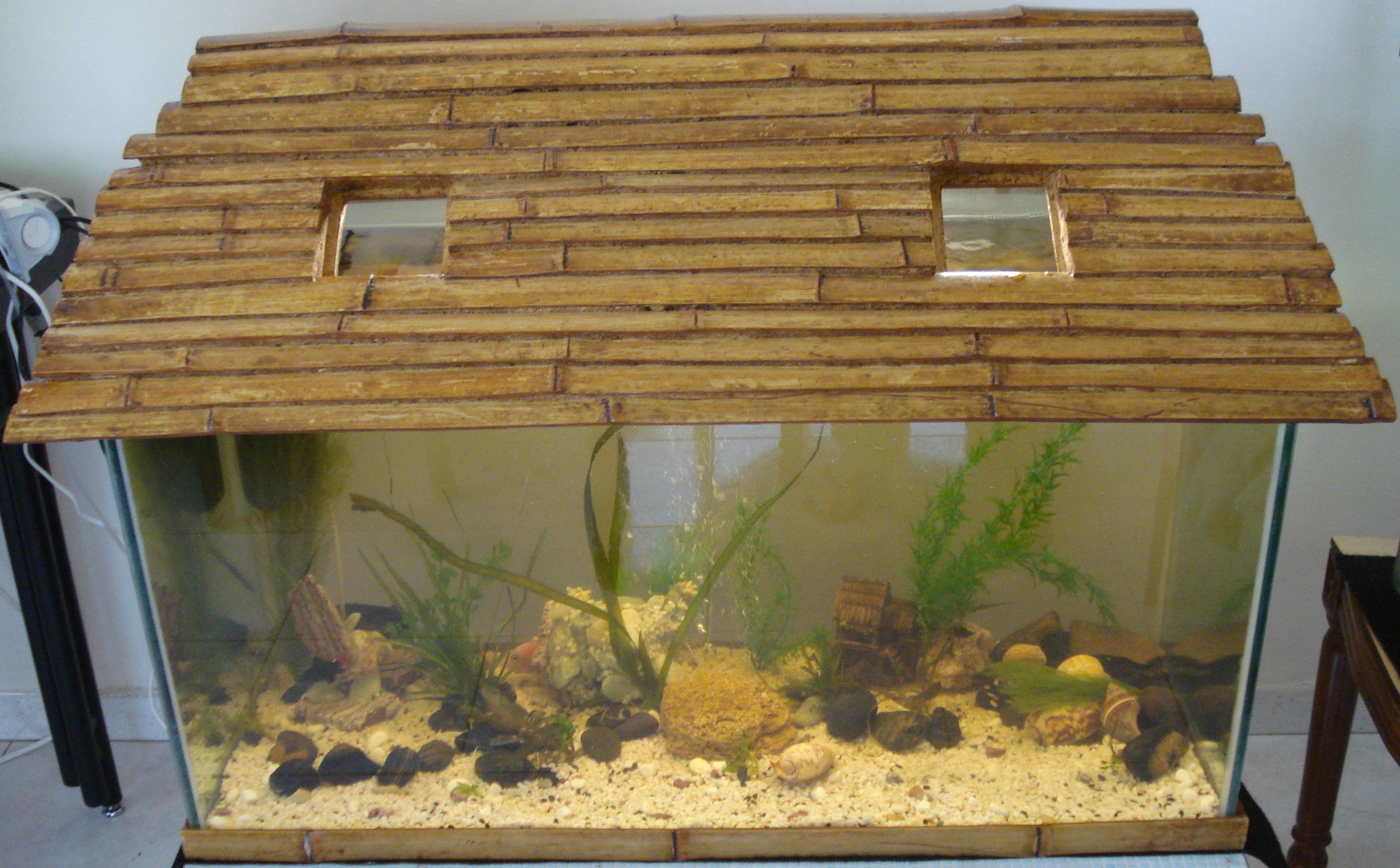 Decoration Interieur Aquarium Enkiaqua L Aquariophilie à Dakar