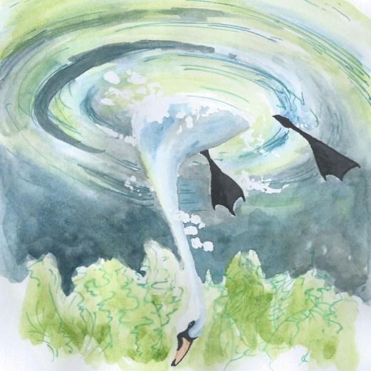 swan-dive